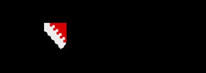 Logo Joensuun kaupunki